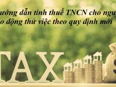 Hướng dẫn tình thuế TNCN cho lao động thử việc theo quy định mới